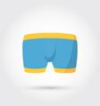 Mens underwear in front vector image