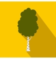 Birch tree icon flat style vector image