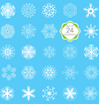 snowflakes set various designs symmetrical snow vector image