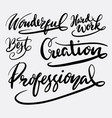 Creation and professional hand written typography vector image
