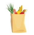 fruits and vegetables in brown grocery bag vector image