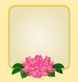 Golden frame with pink rhododendron greeting card vector image