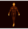 Man Stands on his Feet 3D Model of Man vector image