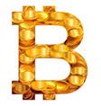 bitcoin symbol virtual money vector image