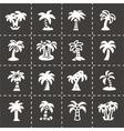 Palm icon set vector image