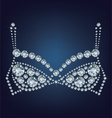 shiny bra made up a lot of diamonds vector image