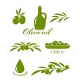 set of olive design elements vector image