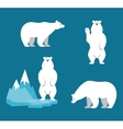 Polar Bears collection Funny cartoon character vector image
