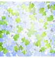 forget me not background vector image vector image