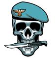 military skull bite a dagger vector image vector image