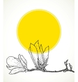Card with hand drawn magnolia on yellow circle vector image