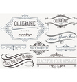 Calligraphic Frame Set vector image