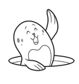 cute seal vector image