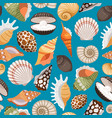 travel background with sea shells vector image
