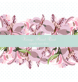 Vintage floral Lily flowers card vector image