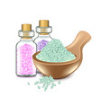Spa salts isolated on white vector image