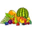 fruits group cartoon vector image vector image