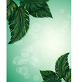 A special paper with big pointed leaves vector image vector image