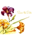 Nice watercolor lily frame vector image