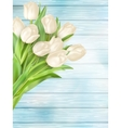 Fresh white tulips on wood planks EPS 10 vector image