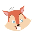 squirrel cartoon icon vector image