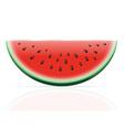watermelon 02 vector image vector image
