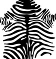 Zebra Safari Pattern vector image