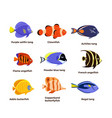 cute fish icons set tropical vector image