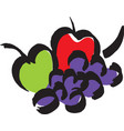fruites the apples and grape vector image