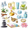 Spa Salon Decorative Icons Set vector image
