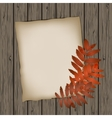 Paper sheet with autumn leaves vector image
