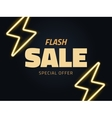 flash sale  background vector image