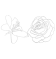 set of shape roses and lilies isolated on white vector image