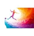 Soccer player Footballer kicks the ball in trendy vector image