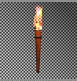 burning wood torch vector image