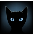 black cat blue eyes vector image vector image