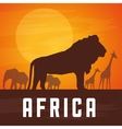 Flat about africa design vector image