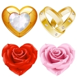 golden jewellery and roses vector image