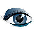 abstract image of a human female eye vector image