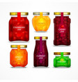 homemade fruit jam jars vector image