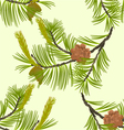 Seamless texture blooming pine tree and pine cones vector image