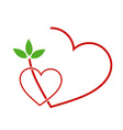 Two Hearts with leaves vector image vector image