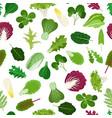 salad vegetable leaves seamless pattern vector image