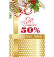Christmas gift voucher vector image