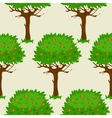 Seamless pattern with green fruit trees vector image