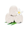 Spa towels isolated on white vector image