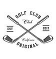 golf clubs vector image