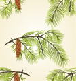 Seamless texture White Pine branch with pine cone vector image