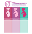 Pregnant female silhouettes vector image