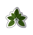 sticker green leaves with ramifications vector image